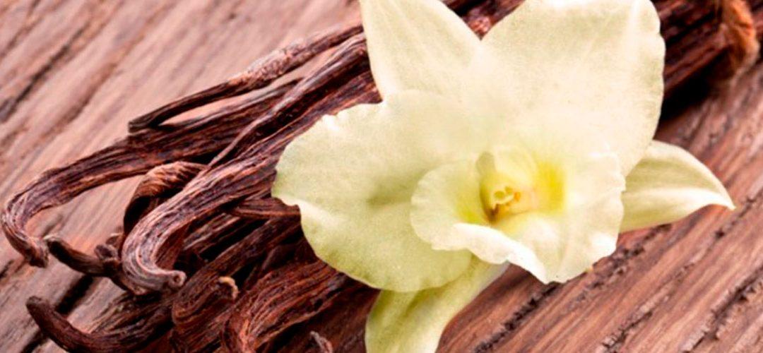 La vaniglia: l'aroma più famoso del mondo
